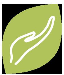 pictogramme vert